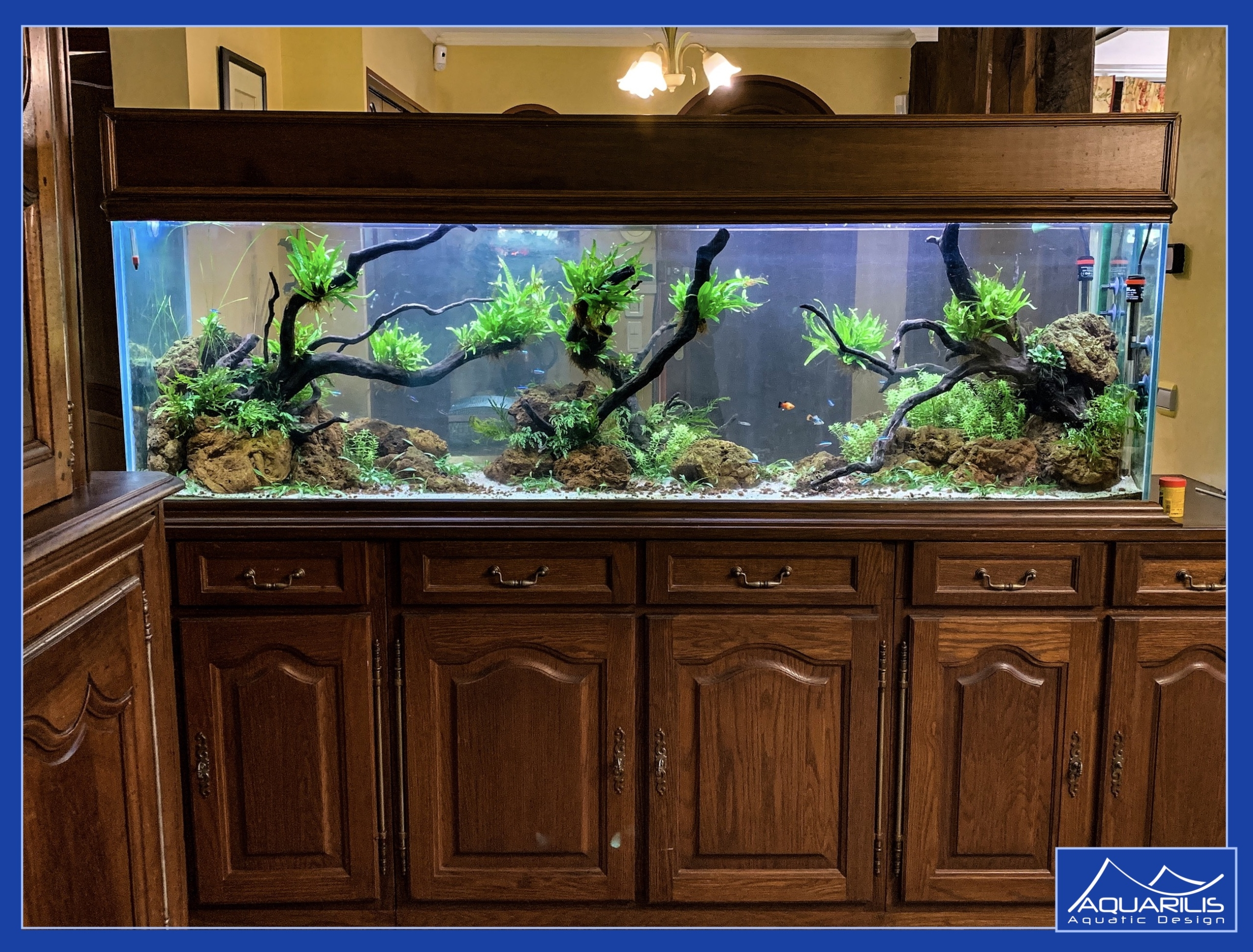 aquarium doube face maison