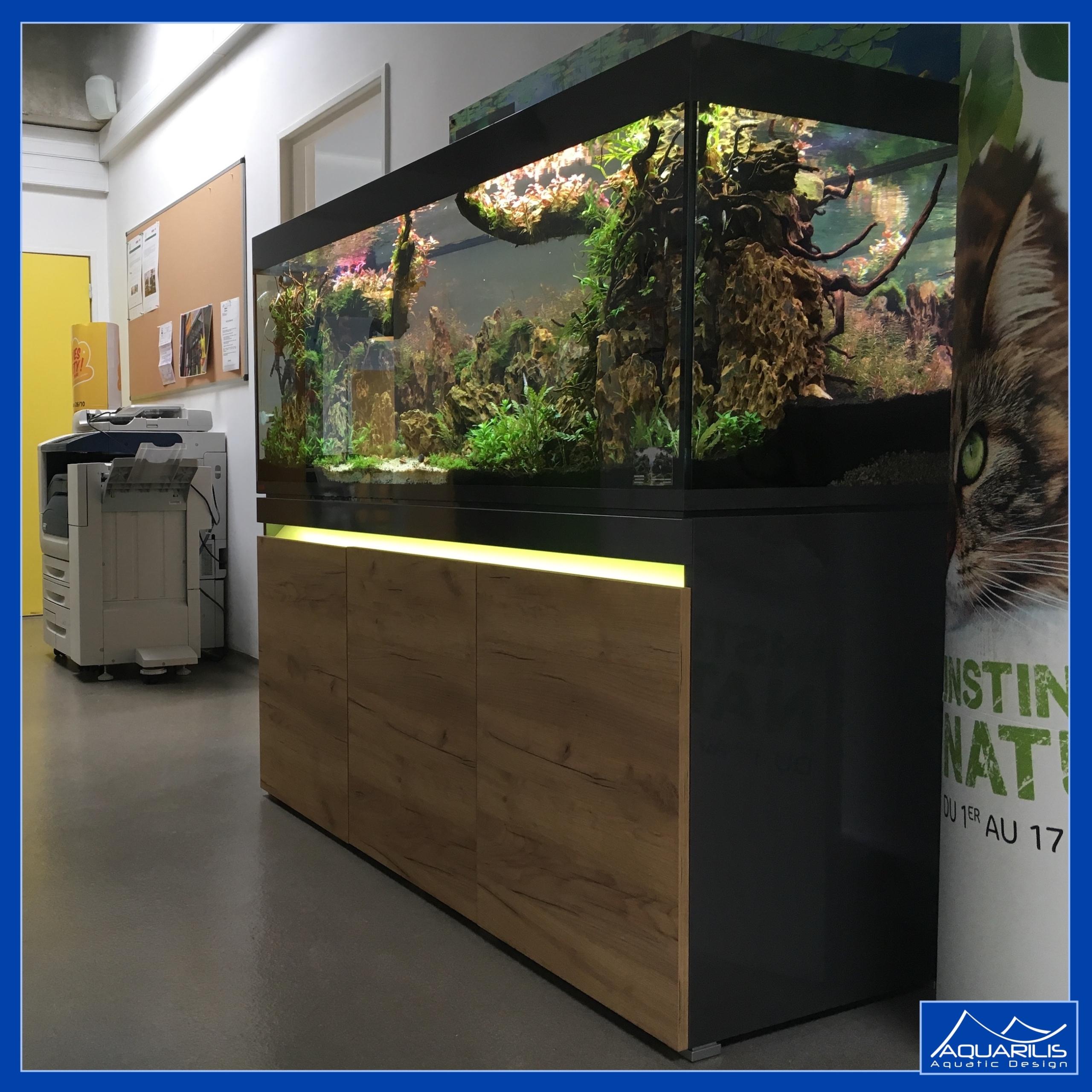 aquarium hall accueil