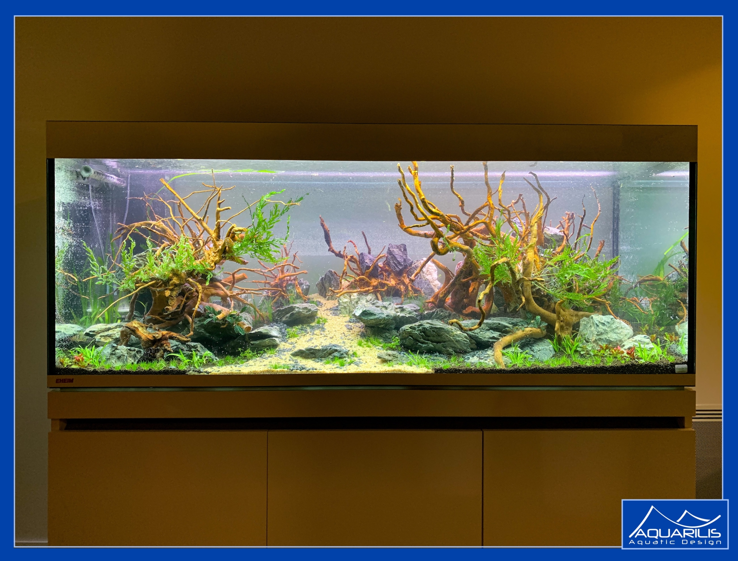 aquarium appartement
