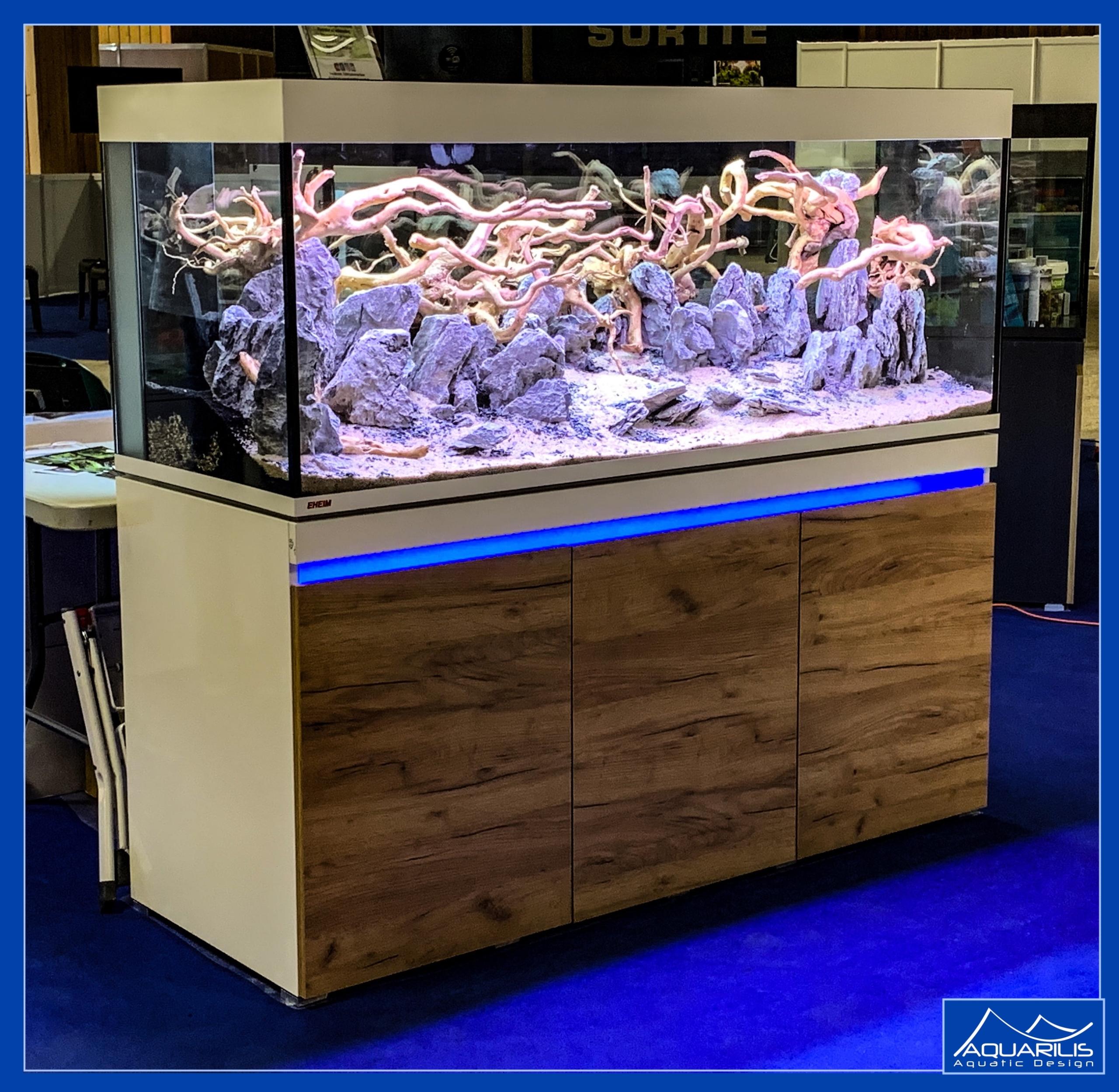 aquarium paris animal show