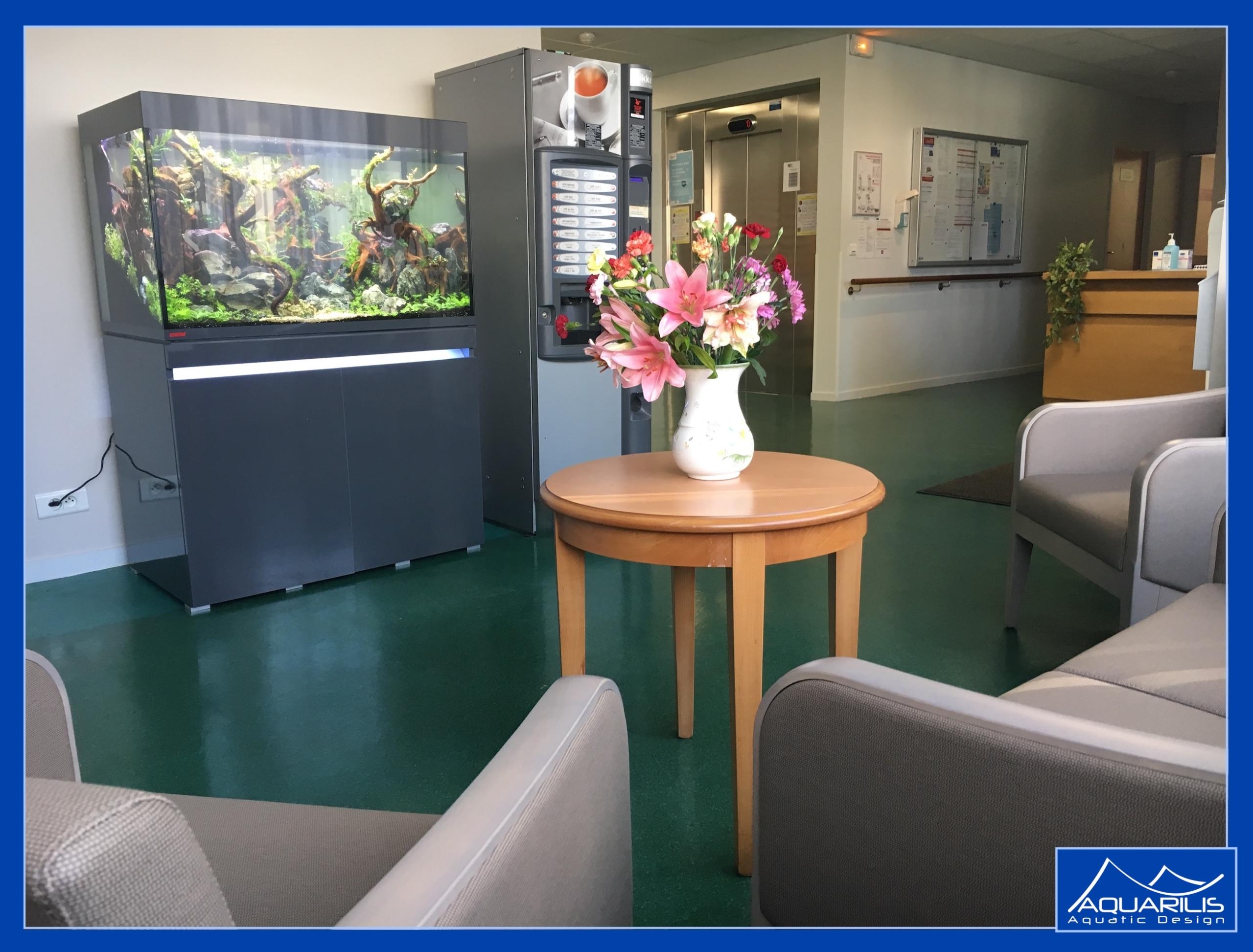 aquarium salle attente