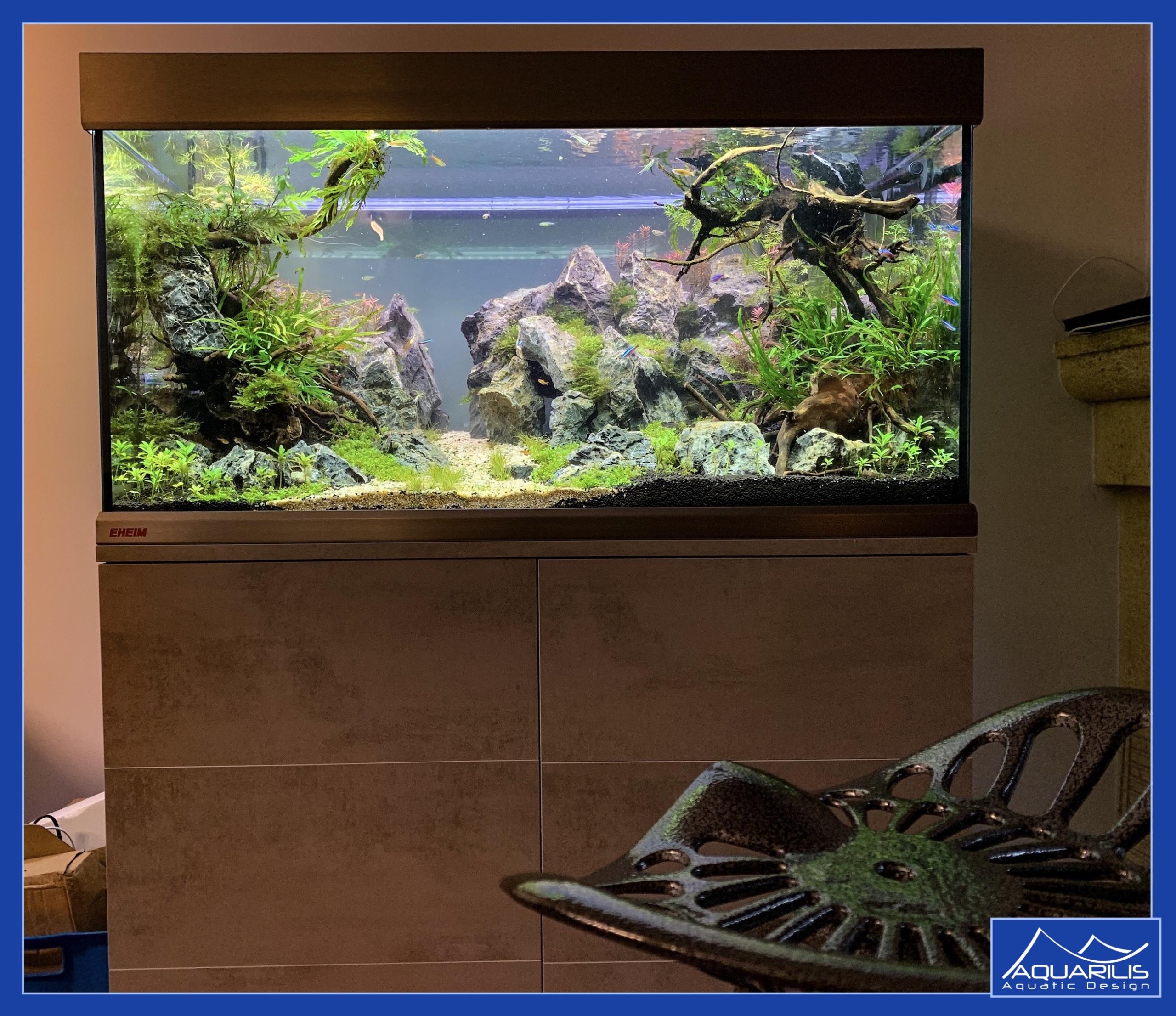 aquarium spectacle famille