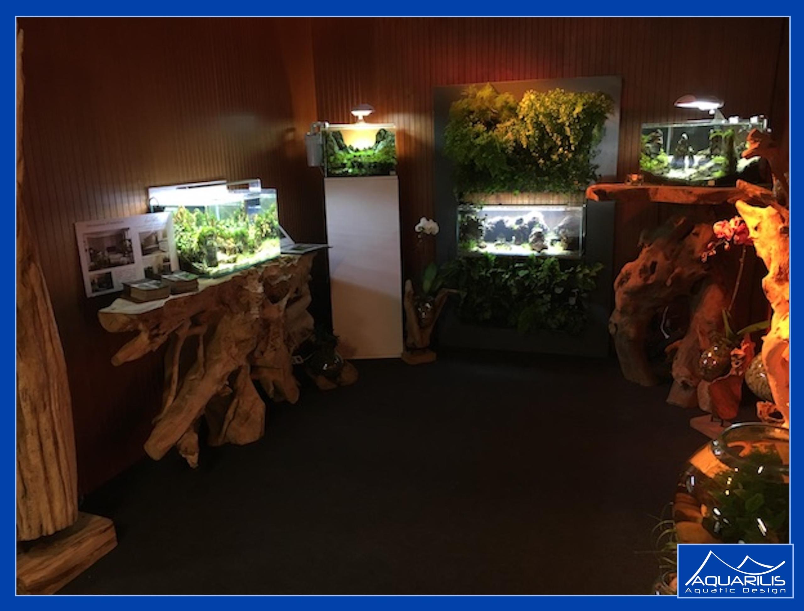 exposition aquariums AZ plafonds