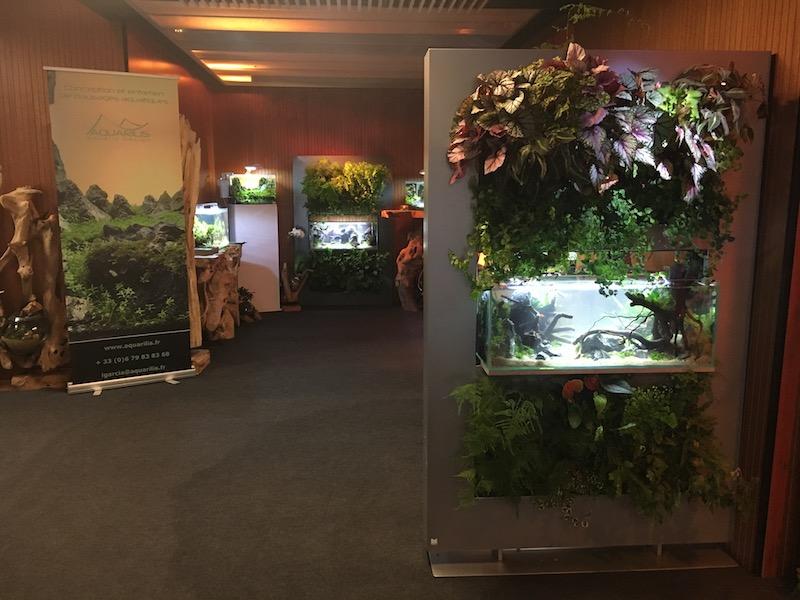 Panneau végétal et aquarium