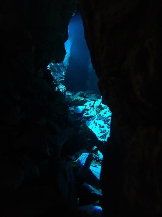 Faille Silfra aquarium