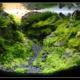 Aquarium Elgol