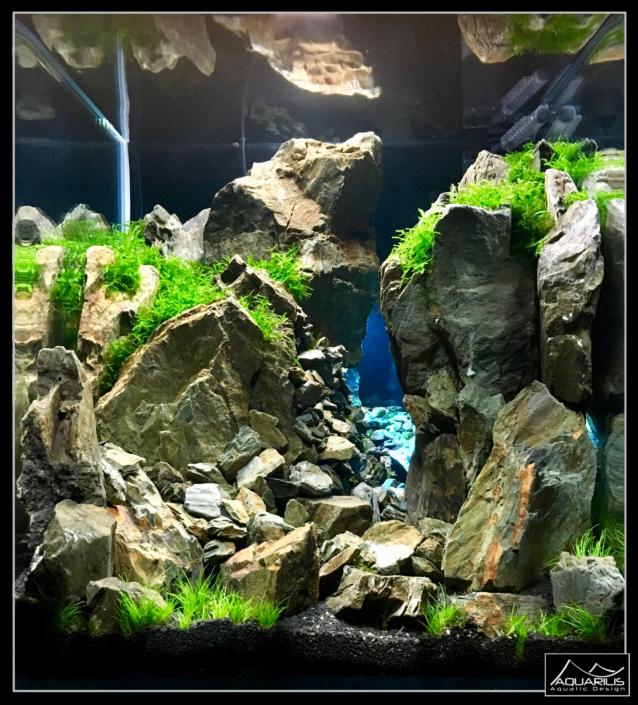 Aquarium silfra