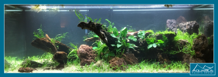 Aquarium Greenwood