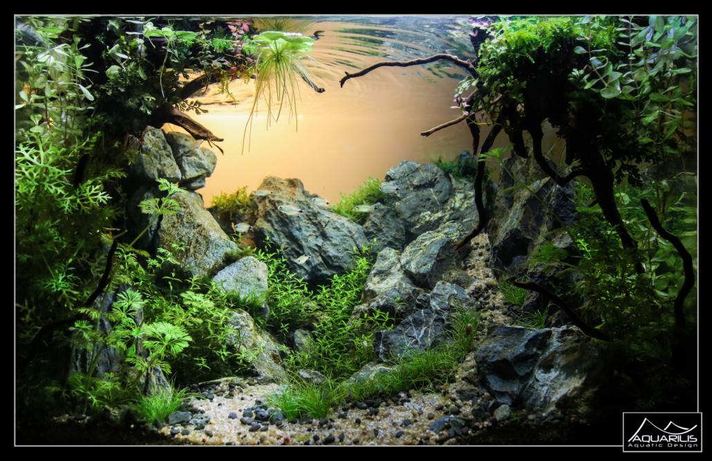 Aquarium Pralognan
