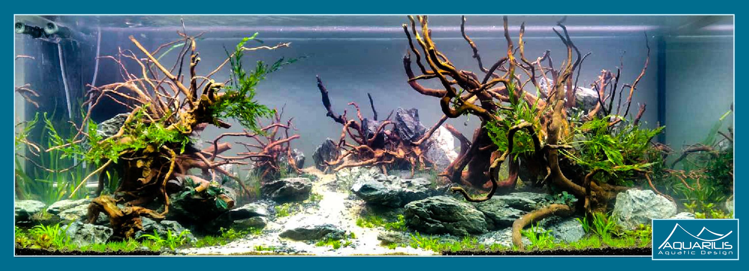 Apachetta aquarium client