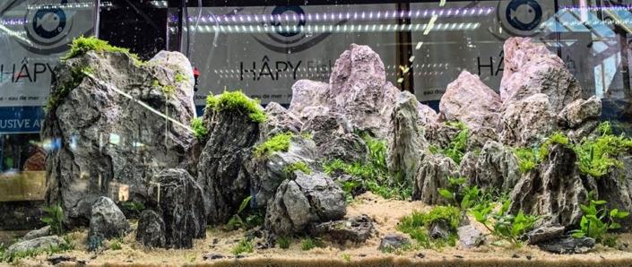 Salon Botanic Eheim