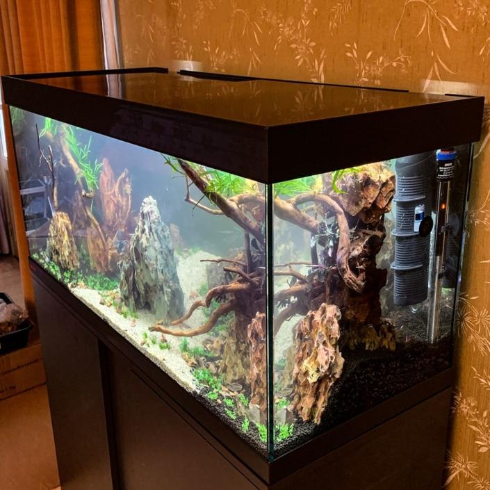 Aquarium vivaline Noel