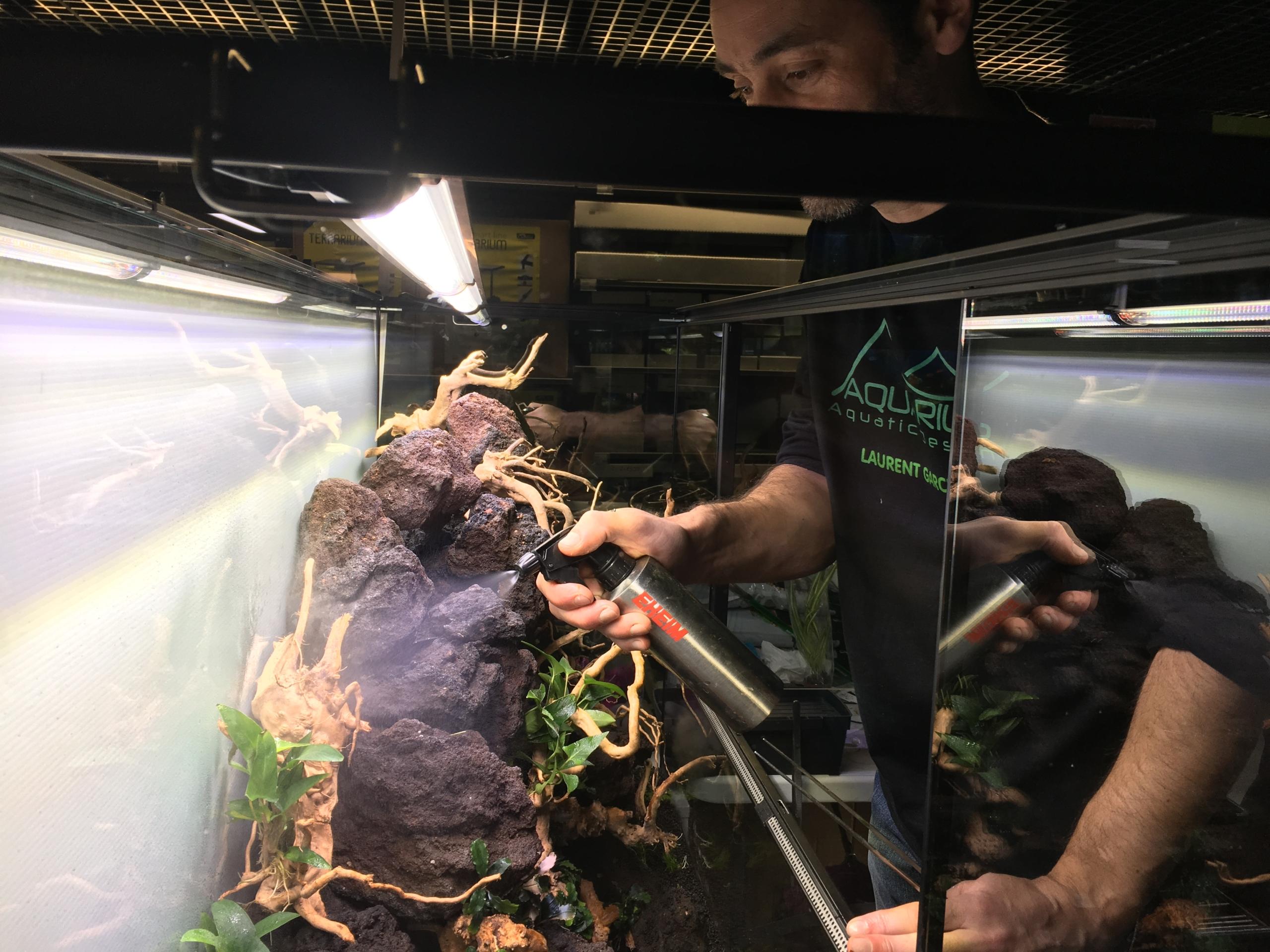 Aquascape paludarium laurent garcia