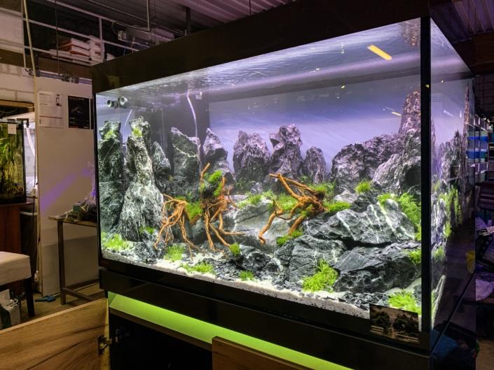 Road Show Eheim Europrix aquarium