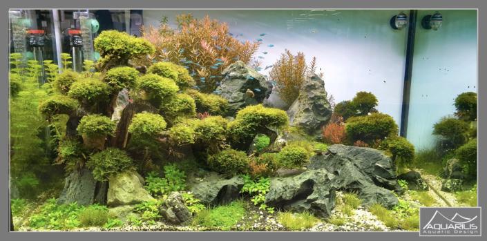 Truffaut Ville du Bois aquarium eheim
