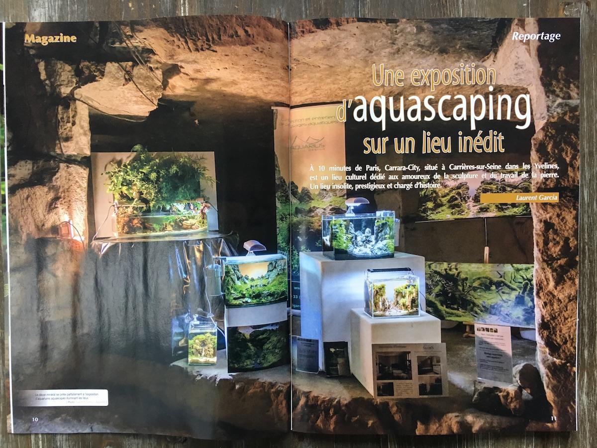 Aquamag aquarilis