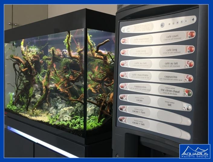 aquarium entreprise cafe