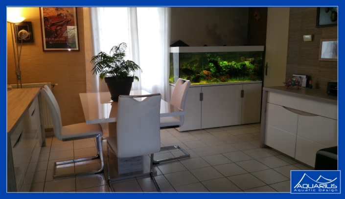 aquarium decoration interieur