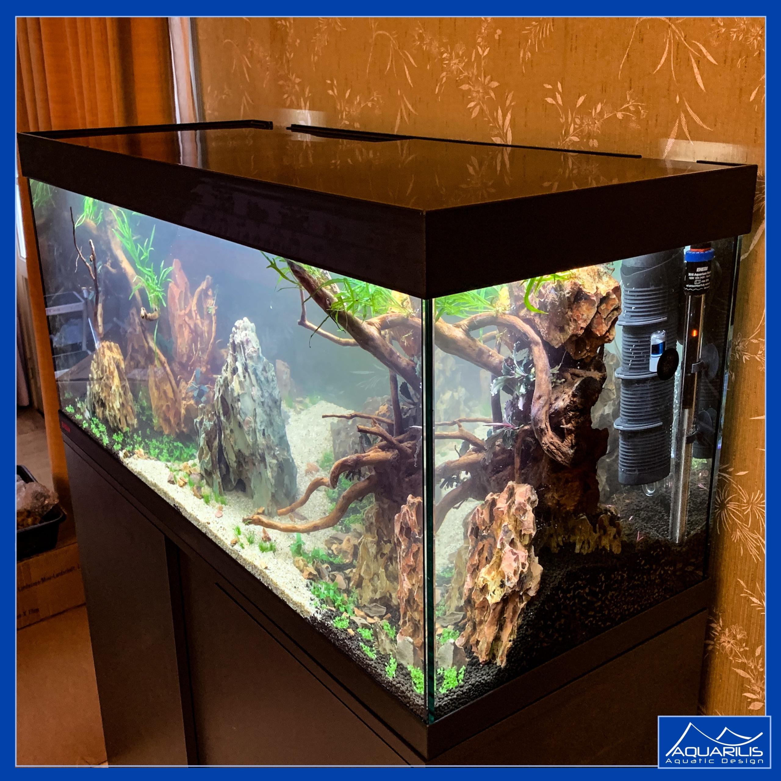 aquarium vivaline salon