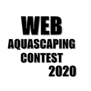 Web Aquascaping contest 2020