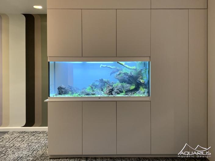 aquarium intégré au meuble