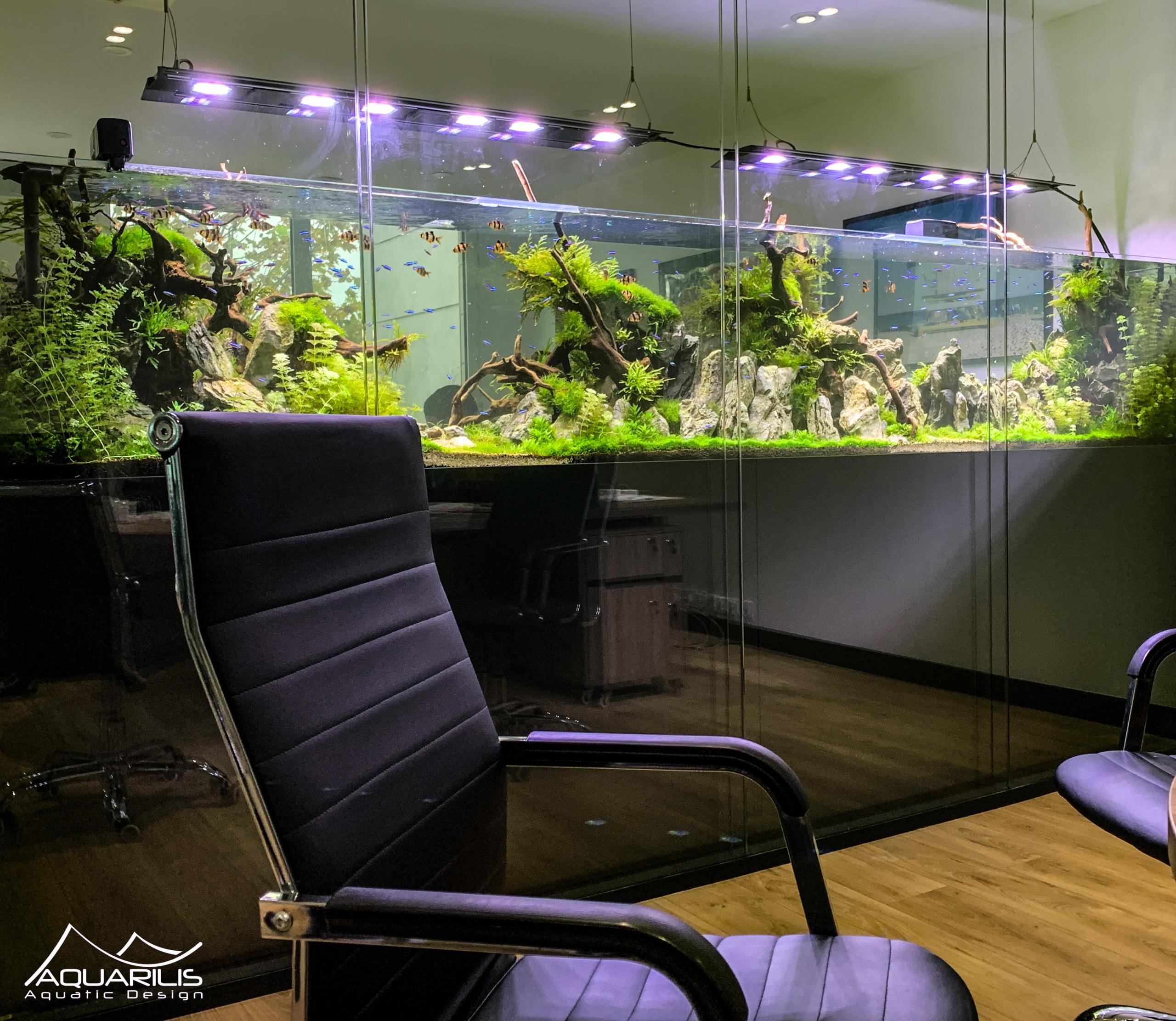 Aquarium entreprise