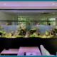 Aquarium geant
