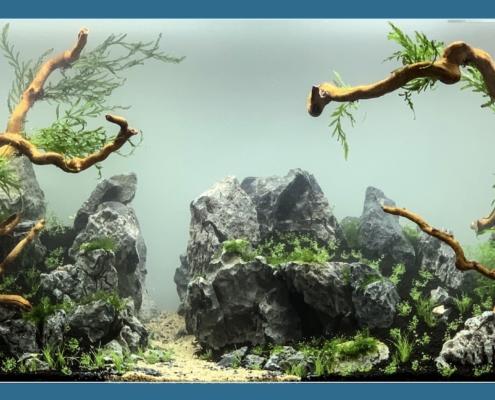 Aquarium Chatou