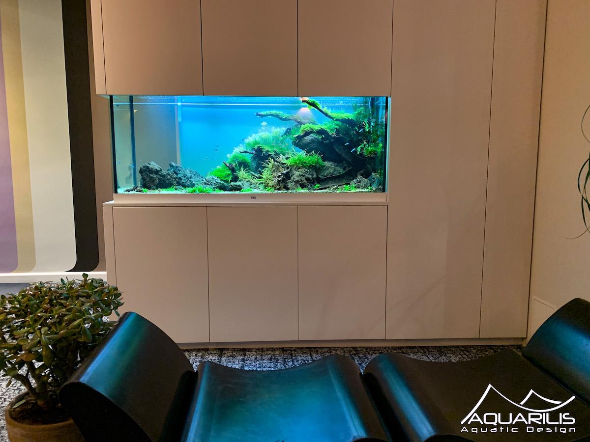 aquarium en entreprise