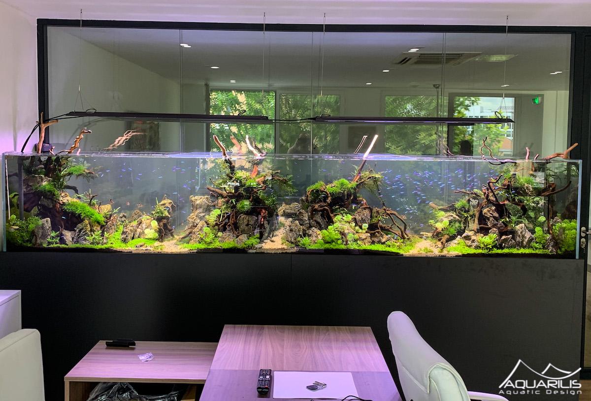 Un aquarium en entreprise - Aquarilis