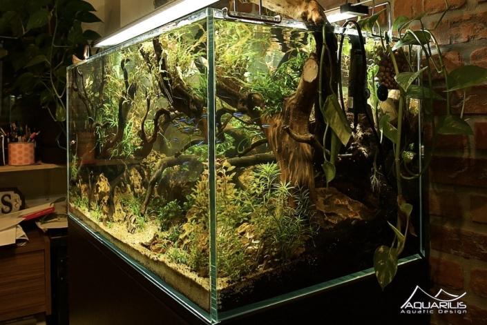 aquaponie aquascape