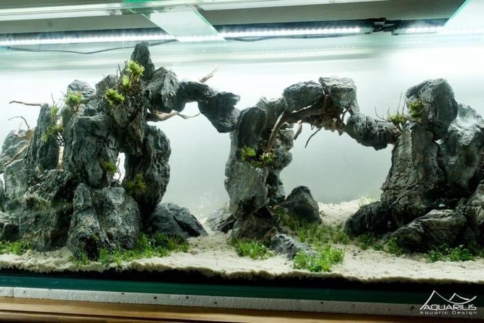 arches aquarium